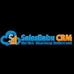SALESBABU BUSINESS SOLUTIONS